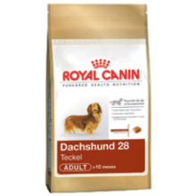 ROYAL CANIN DACHSHUND ADULTO 2.5 KG