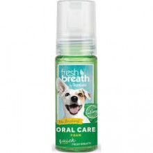 FRESH BREATH ORAL CARE FOAM 133 ML